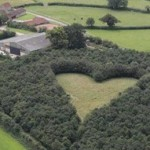 ชายอังกฤษปลูกป่ารูปหัวใจ