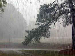 กทม.ฝนตก80%