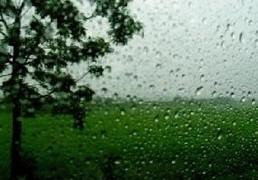 ภาคมีฝนชุก